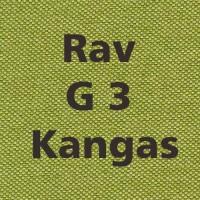 Rav G3