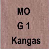 MO G1